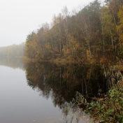 Wasser im Nebel im Herbst