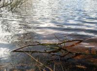 Wasser-Meditation