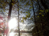Sonne Meditation