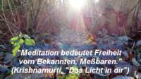 Licht_Laub_Meditation